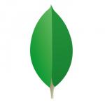 MongoDB Jackson Mapper – Tutorial